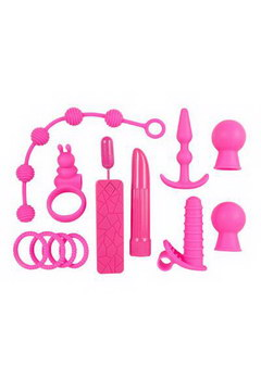 Coffret sextoys the insider rose 2